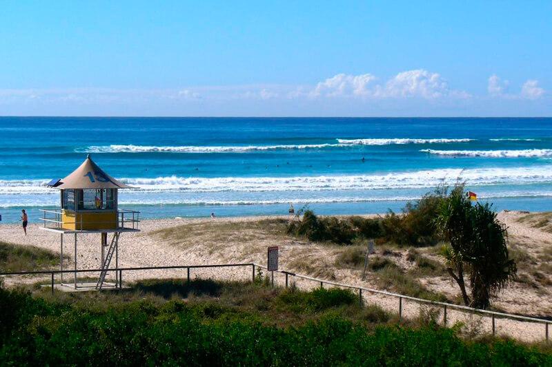 surfing palm beach