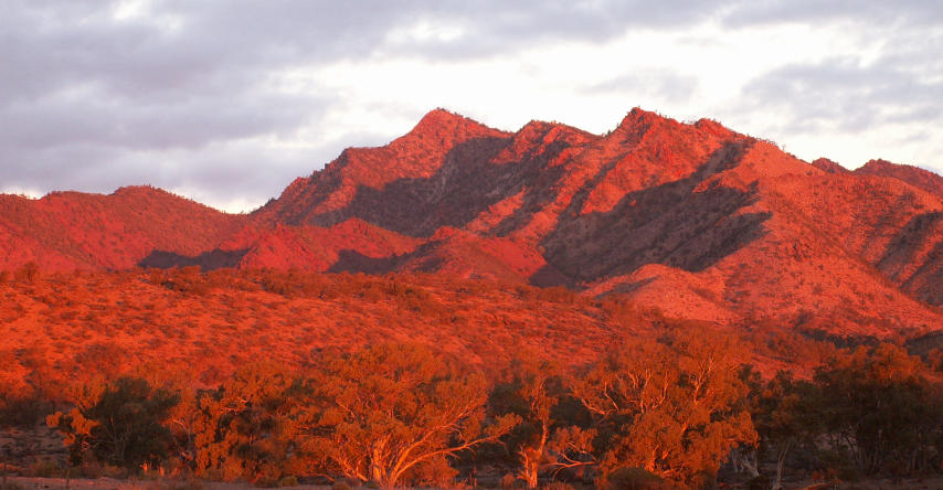 Flinders ranges no outback australiano