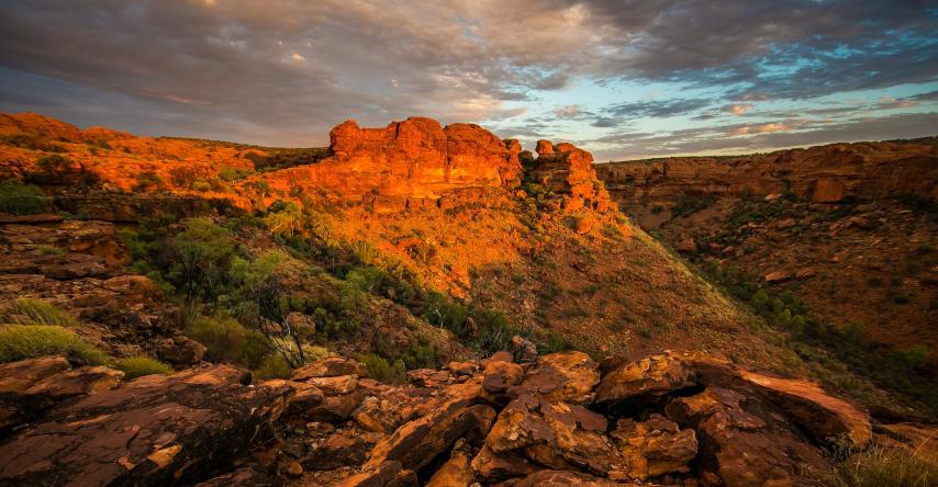 kings canyon no outback australiano