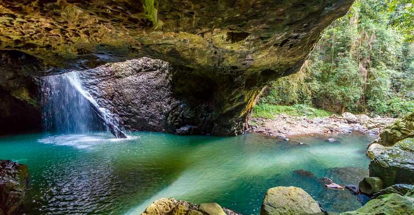 springbrook national park o que fazer em gold coast
